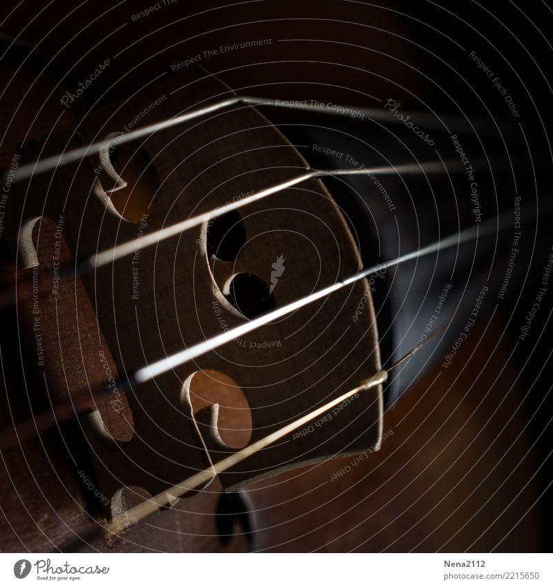 Geige - Q4 Kunst Ausstellung Kunstwerk Musik Musik hören Konzert Open Air Bühne Oper Band Musiker Orchester ästhetisch Streichinstrumente Saiteninstrumente Steg