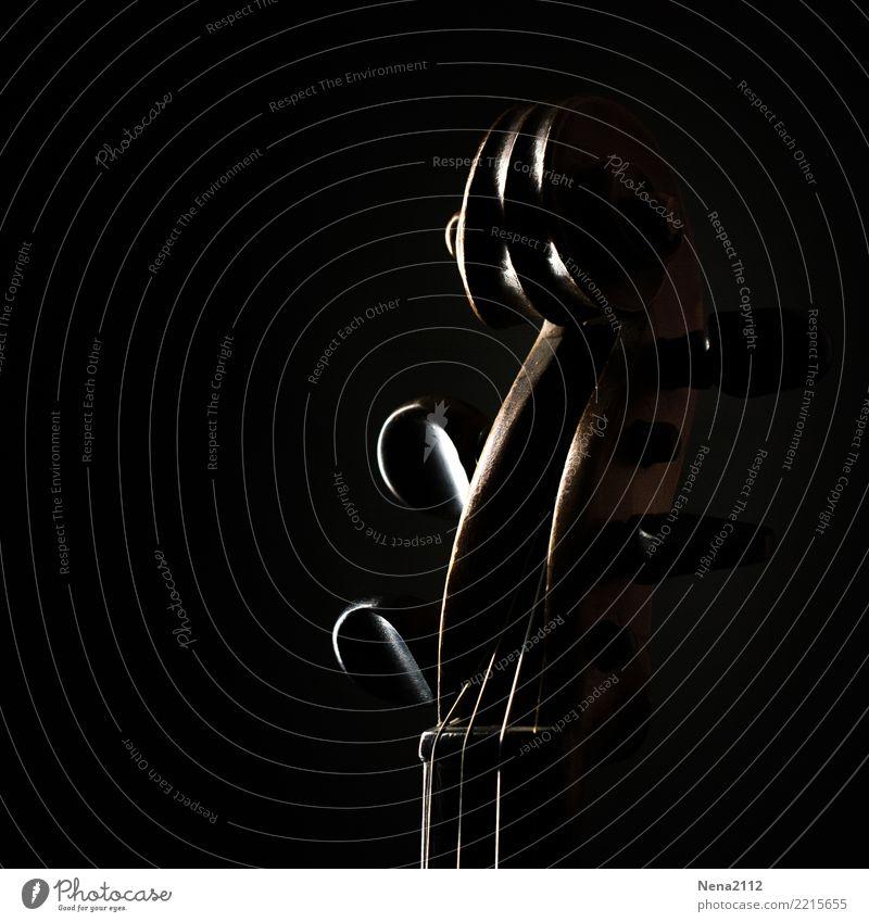 Geige - Q6 Kunst Musik Musik hören Konzert Open Air Bühne Oper Band Musiker Orchester dunkel Musikinstrument Streichinstrumente Saiteninstrumente geigenschnecke