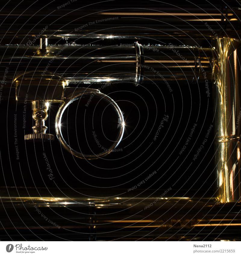 Trompete - Q2 Kunst Musik Musik hören Konzert Open Air Bühne Oper Band Musiker Orchester glänzend Blechblasinstrumente Blasinstrumente rund Metall Farbfoto