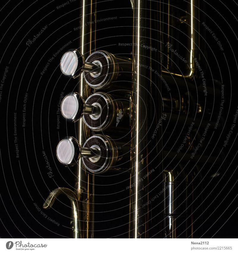 Trompete - Q1 Musik Musik hören Konzert Open Air Bühne Musiker Orchester dunkel elegant rund schwarz Blasinstrumente Tasteninstrumente Blechblasinstrumente