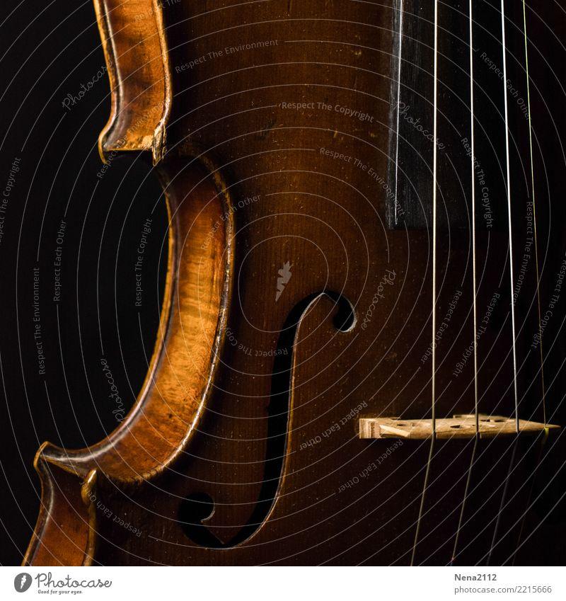 Geige - Q1 Kunst Musik Musik hören Konzert Open Air Bühne Musiker Orchester ästhetisch Holz Musikinstrument Saiteninstrumente Low Key klassisch