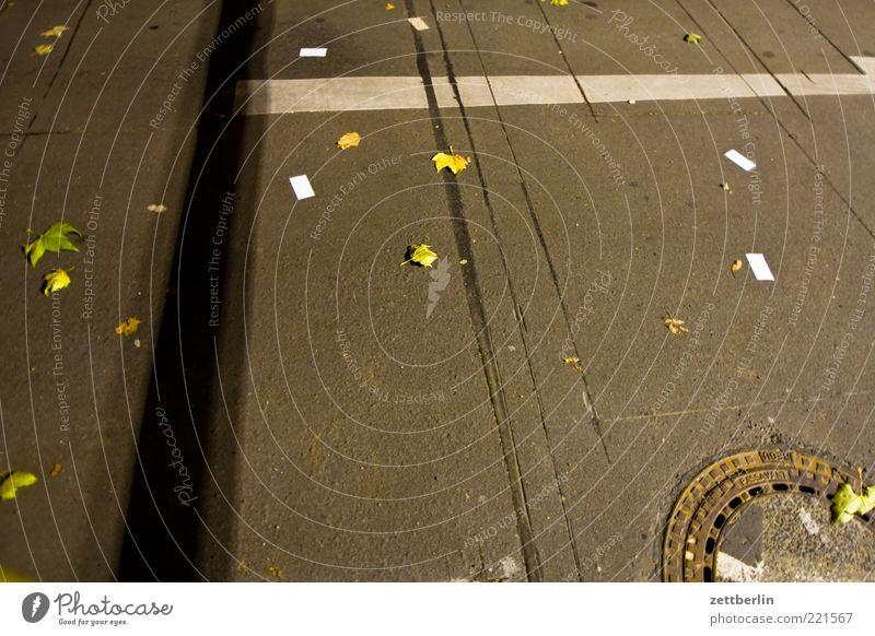 Striche, Streifen, Blätter, Gulli Verkehrswege Straßenverkehr Wege & Pfade Zeichen Schilder & Markierungen Verkehrszeichen Traurigkeit Gully Seitenstreifen Ecke