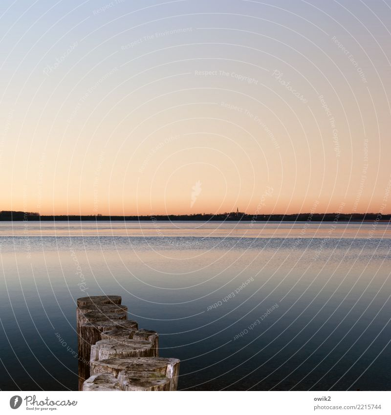 Ruhepool Natur Wasser Landschaft Einsamkeit ruhig Ferne Umwelt Holz See Horizont Idylle Schönes Wetter Wolkenloser Himmel Windstille friedlich Holzpfahl