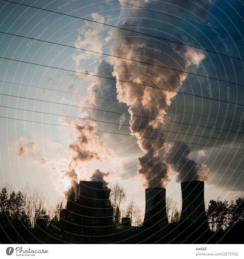 Stoßzeit Himmel Baum Wolken Arbeit & Erwerbstätigkeit Luft Energiewirtschaft Technik & Technologie Sträucher groß bedrohlich Kabel Risiko Wirtschaft Zerstörung
