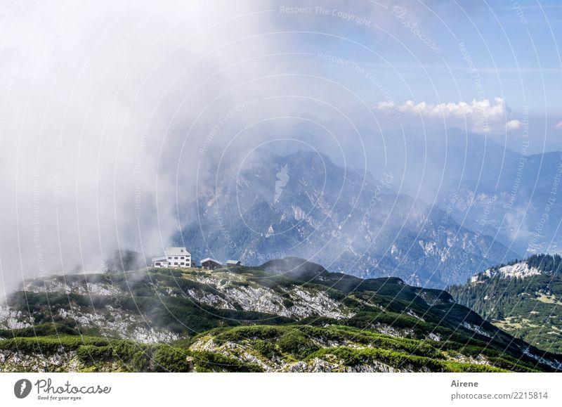 the dark side | kommt näher Landschaft Himmel Wolken Schönes Wetter schlechtes Wetter Nebel Sträucher Latschenkiefer Bodendecker Kiefer Felsen Alpen