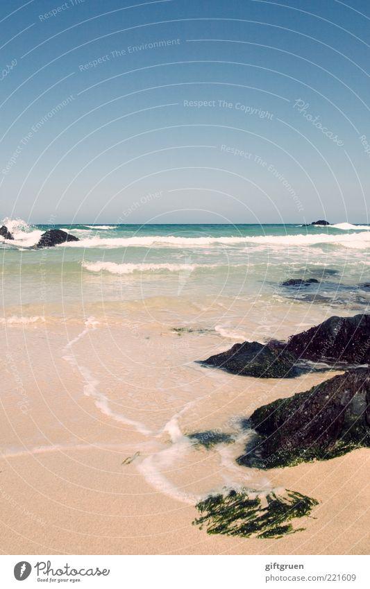 unyielding Umwelt Natur Landschaft Urelemente Sand Wasser Himmel Wolkenloser Himmel Klima Wetter Schönes Wetter Wellen Küste Meer Insel natürlich Algen Stein