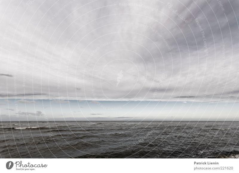 Northern Skies Umwelt Natur Urelemente Luft Wasser Himmel Wolken Gewitterwolken Herbst Wetter schlechtes Wetter Unwetter Wind Sturm Wellen Küste Ostsee Meer