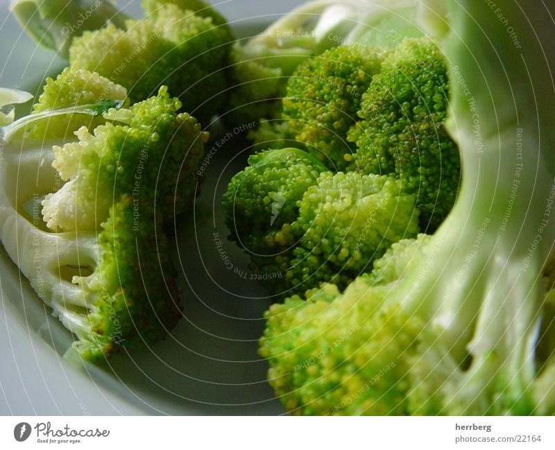 vitaminbombe grün Ernährung Gesundheit Kochen & Garen & Backen nah Gemüse lecker Broccoli