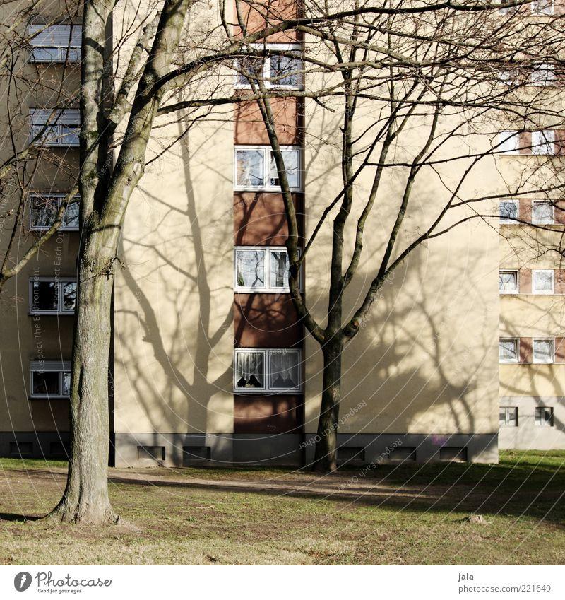 block Herbst Pflanze Baum Gras Wiese Haus Hochhaus Bauwerk Gebäude Architektur Fassade Fenster trist Farbfoto Außenaufnahme Menschenleer Tag Licht Schatten
