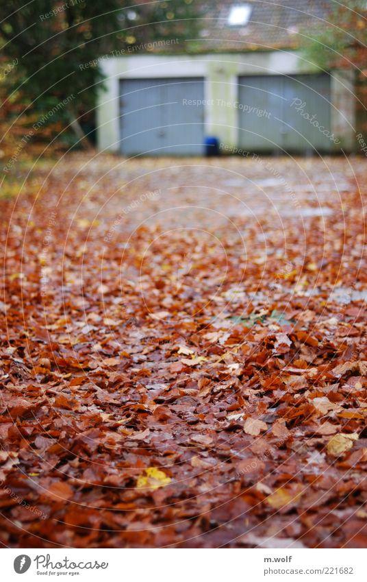 ...im Herbst Haus Garage Garagentor Natur Wetter schlechtes Wetter Blatt Deutschland Menschenleer Mauer Wand Fassade Dach alt dreckig hässlich kalt kaputt