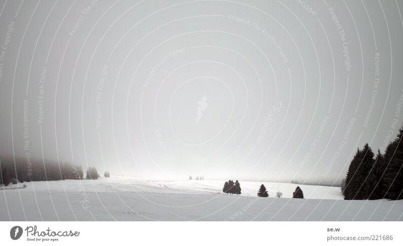 Märchenlandschaft Himmel weiß Baum Winter Wolken ruhig schwarz Einsamkeit Ferne Wald dunkel kalt Schnee Landschaft Berge u. Gebirge grau