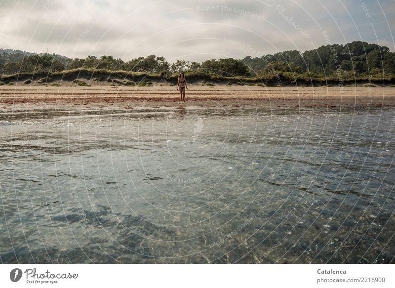Strandlandschaft mit junger Frau Natur Ferien & Urlaub & Reisen Sommer grün Wasser Baum Meer Wolken ruhig Freude gelb Glück Freiheit Schwimmen & Baden grau