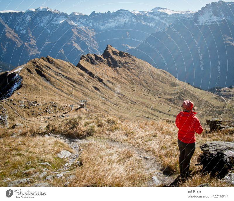 Wanderwetter X Frau Mensch Natur Ferien & Urlaub & Reisen Pflanze Landschaft Tier Ferne Berge u. Gebirge Erwachsene Umwelt Herbst feminin Gras Tourismus