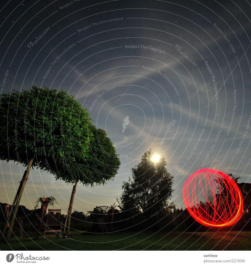 Nächtliche Gartenarbeit Himmel Baum blau rot Sommer schwarz Ferne Farbe dunkel Bewegung verrückt Geschwindigkeit ästhetisch rund einzigartig