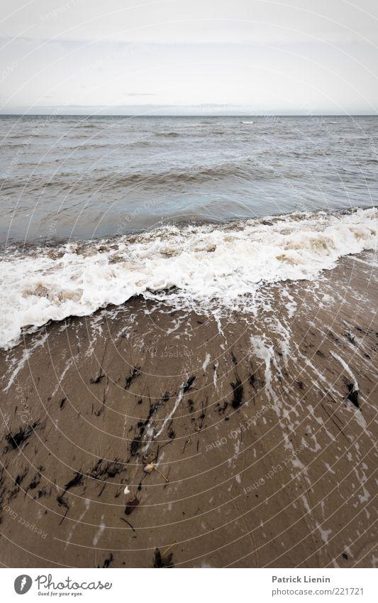 Lack of color Umwelt Natur Urelemente Sand Luft Wasser Himmel Herbst Klima Wetter schlechtes Wetter Wind Wellen Küste Strand Ostsee Meer Blick bedrohlich dunkel