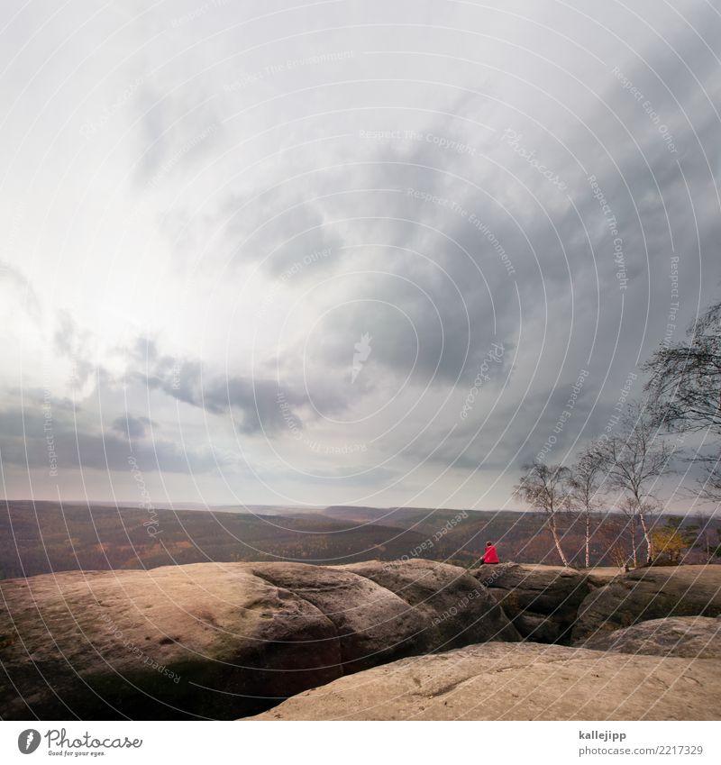 pfaffensteinview Mensch Natur Ferien & Urlaub & Reisen Pflanze Landschaft rot Erholung Tier ruhig Wald Umwelt Herbst feminin Tourismus Deutschland Felsen