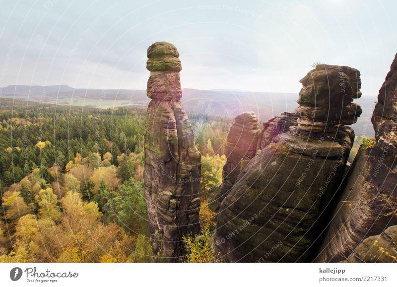 babarine Natur Ferien & Urlaub & Reisen Pflanze Landschaft Tier Ferne Wald Berge u. Gebirge Umwelt Herbst Freiheit Felsen Ausflug wandern Wetter Abenteuer