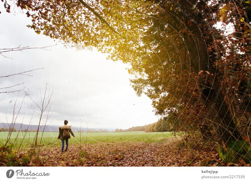 girl in autum Kind Mensch Natur Ferien & Urlaub & Reisen Jugendliche Landschaft Baum Erholung Wolken Umwelt Herbst Wiese feminin Tourismus Horizont wandern