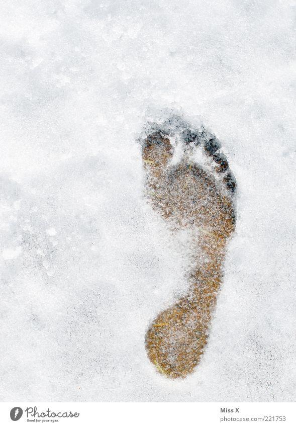de voetafdruk Winter Eis Frost Schnee kalt weiß frieren Barfuß Fußspur Abdruck Farbfoto Außenaufnahme Menschenleer Vogelperspektive Schneespur Textfreiraum oben