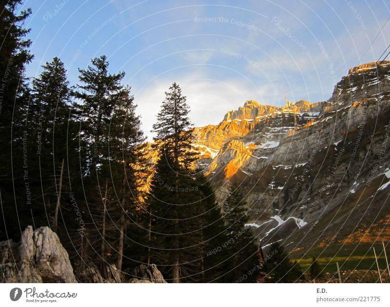 Das Leuchten der Berge Ferne Freiheit Schnee Winterurlaub Berge u. Gebirge Umwelt Natur Landschaft Himmel Wolken Wetter Schönes Wetter Baum Felsen Alpen Gipfel