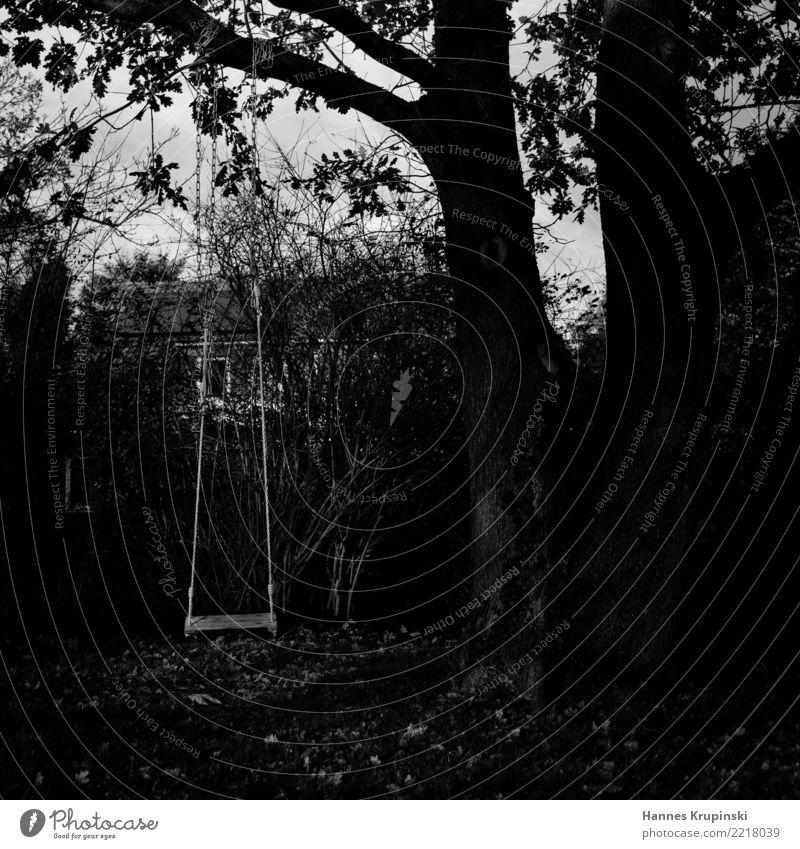 trister Spielort Spielen Schaukel schaukeln Spielplatz Baumschaukel Abenteuer Kindheit Sträucher Bewegung kalt grau Langeweile Sehnsucht Einsamkeit verloren