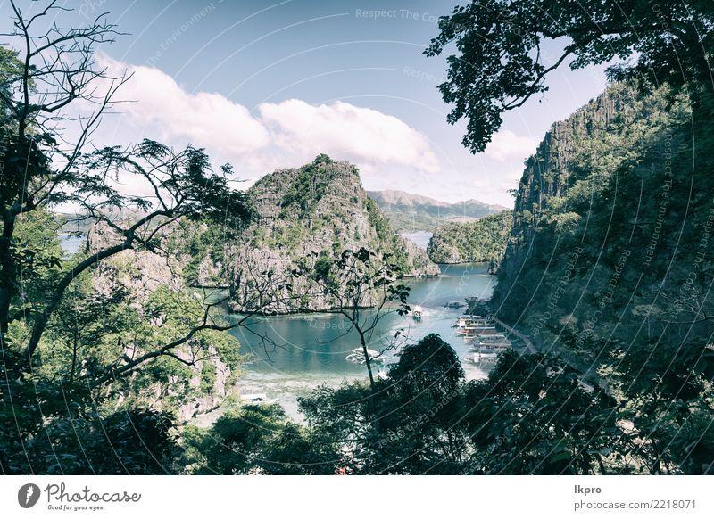die wunderschöne Paradiesbucht und tropische Lagune Himmel Natur Ferien & Urlaub & Reisen Pflanze blau Sommer weiß Landschaft Baum Meer Erholung Strand schwarz