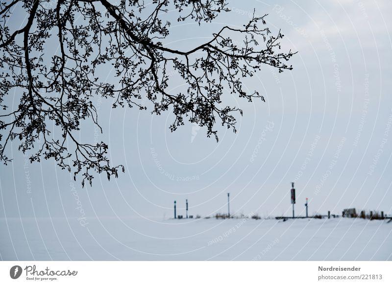 Winterblues Natur Baum Winter ruhig Einsamkeit dunkel kalt Schnee Wege & Pfade See Landschaft Eis Stimmung Nebel Wetter Schilder & Markierungen