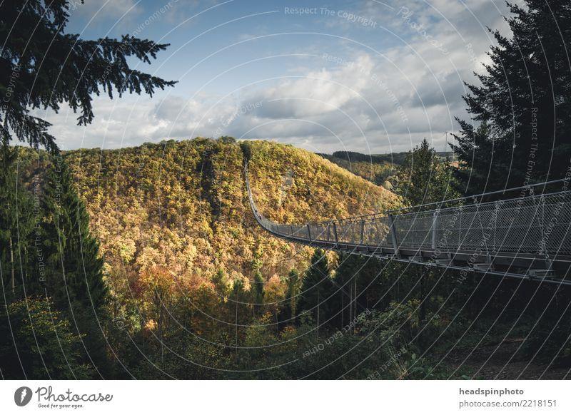 Geierlay Hängebrücke im Herbst Himmel Natur Ferien & Urlaub & Reisen Landschaft Erholung Wolken Bewegung Tourismus Freiheit Ausflug gehen Freizeit & Hobby
