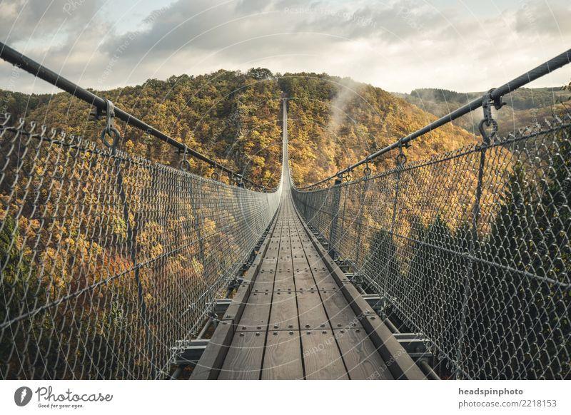 Geierlay Hängebrücke im Herbst Ferien & Urlaub & Reisen Tourismus Ausflug Abenteuer Freiheit Expedition wandern Natur Landschaft Nebel Wald Hügel
