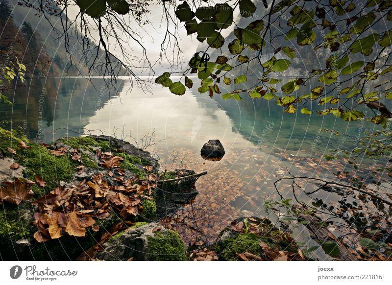 Stilles Wasser Natur schön Himmel Baum grün ruhig Blatt Wolken Herbst Berge u. Gebirge grau Stein See Landschaft braun