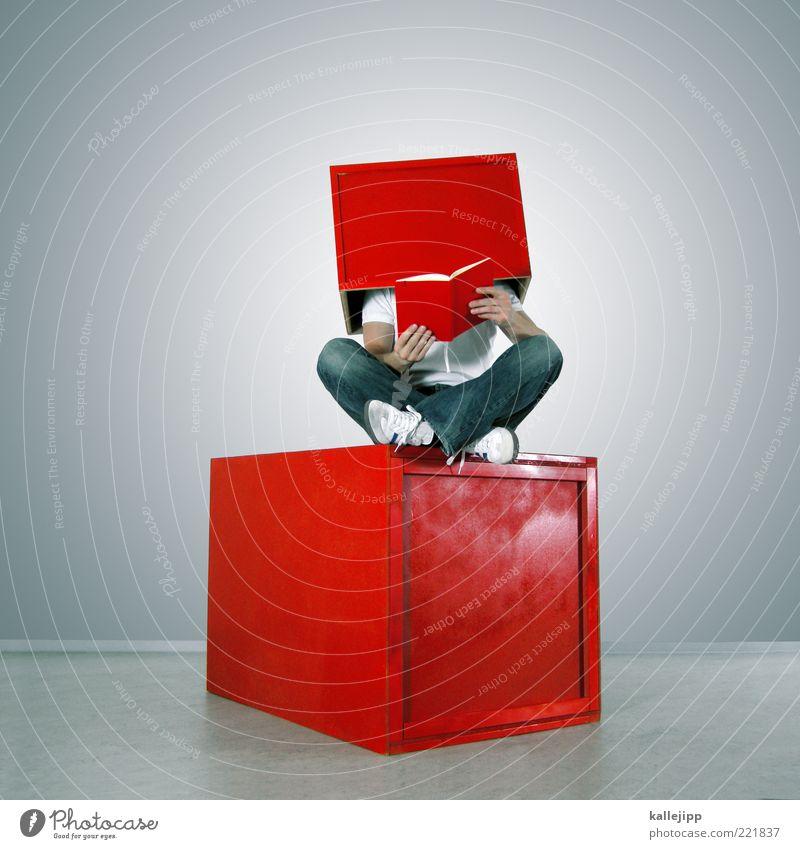 i-box Mensch Mann rot Erwachsene grau sitzen Buch maskulin verrückt Lifestyle Jeanshose lesen Bildung Information Schriftstück skurril
