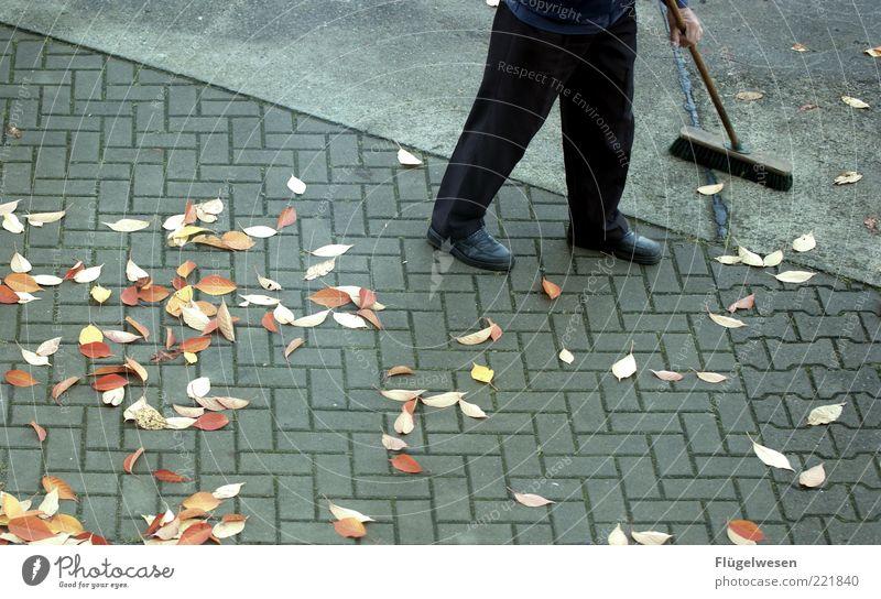 Darf ich Sie bekehren? alt Blatt Herbst Senior Beine dreckig Beton Sauberkeit Reinigen Asphalt Hose Straßenbelag Langeweile Herbstlaub Teer November