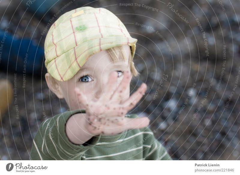 Immer diese Paparazzi Mensch maskulin Kind Kleinkind Junge Kopf Auge 1 3-8 Jahre Kindheit Umwelt Natur Urelemente beobachten leuchten Blick Spielen Coolness