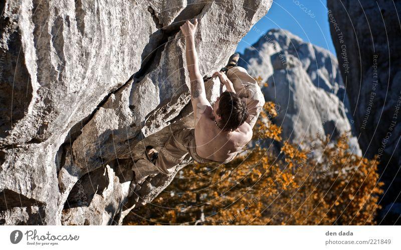 Bouldern in Kroatien Mensch Jugendliche Baum Erwachsene Herbst Sport Berge u. Gebirge Stein Gesundheit Rücken Felsen Arme elegant maskulin frei ästhetisch