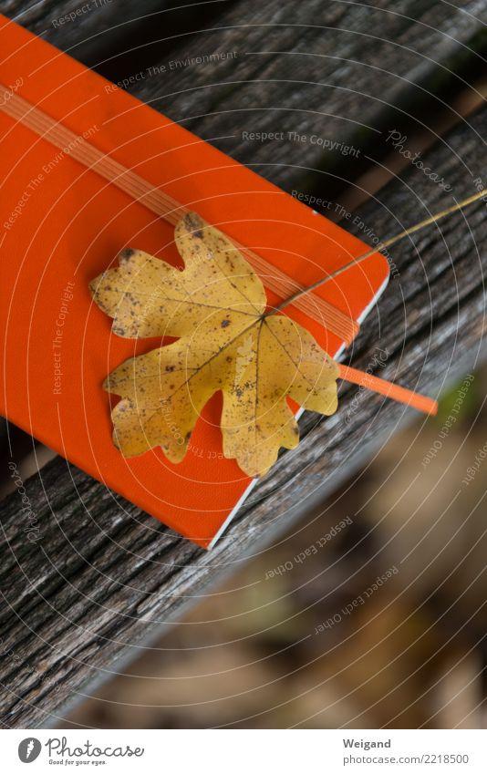 Notizblatt Blatt ruhig gelb Herbst Traurigkeit Tod orange Zufriedenheit Papier Hoffnung Trauer schreiben Meditation Erinnerung Sorge Schreibwaren