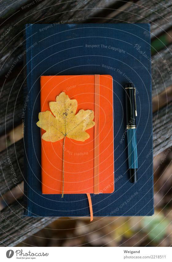 Erinnerung blau Einsamkeit Blatt Herbst orange Zufriedenheit gold Lebensfreude lesen schreiben Gelassenheit Gebet geduldig achtsam Bibel