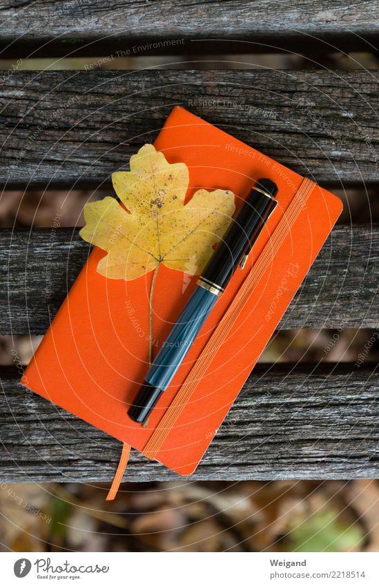 Erinnerungskultur Erholung Blatt ruhig Herbst Traurigkeit orange Zufriedenheit Papier festhalten Trauer schreiben Meditation Schreibstift Sorge Zettel