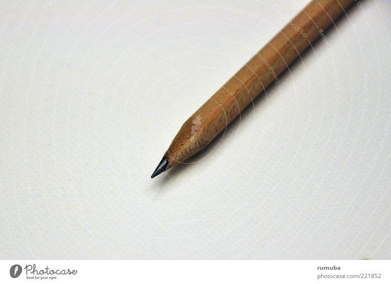 Bleistift Schreibwaren Holz braun Schreibstift Spitze angespitzt Farbfoto Innenaufnahme Textfreiraum links Hintergrund neutral Schatten Vogelperspektive