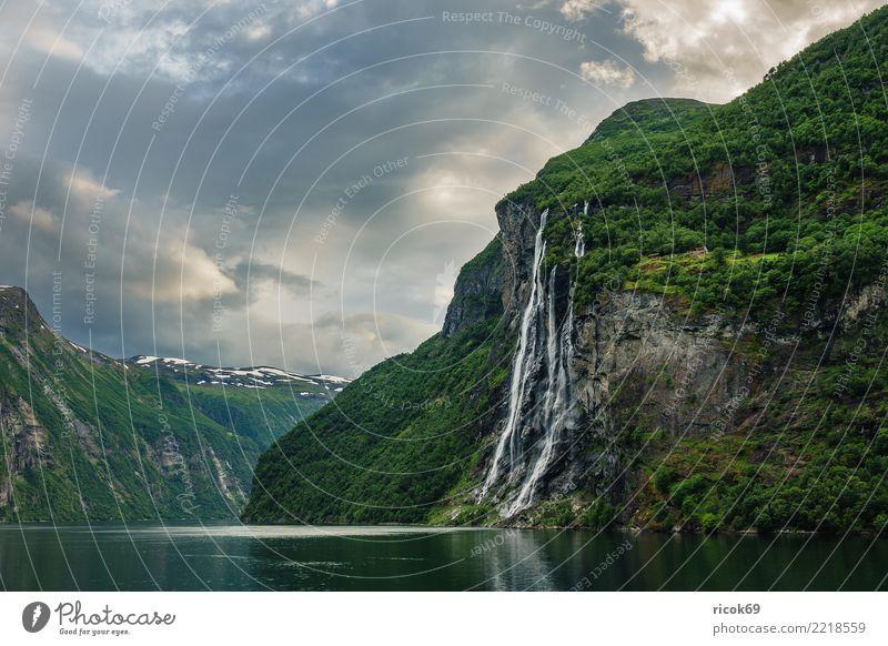 Blick auf den Geirangerfjord in Norwegen Erholung Ferien & Urlaub & Reisen Tourismus Berge u. Gebirge Natur Landschaft Wasser Wolken Baum Felsen Fjord