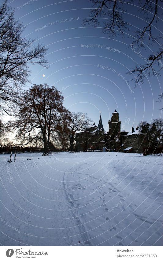 Tanz der Vampire Umwelt Natur Wolkenloser Himmel Mond Winter Wetter Eis Frost Schnee Baum Park Kassel Hessen Deutschland Europa Menschenleer Haus