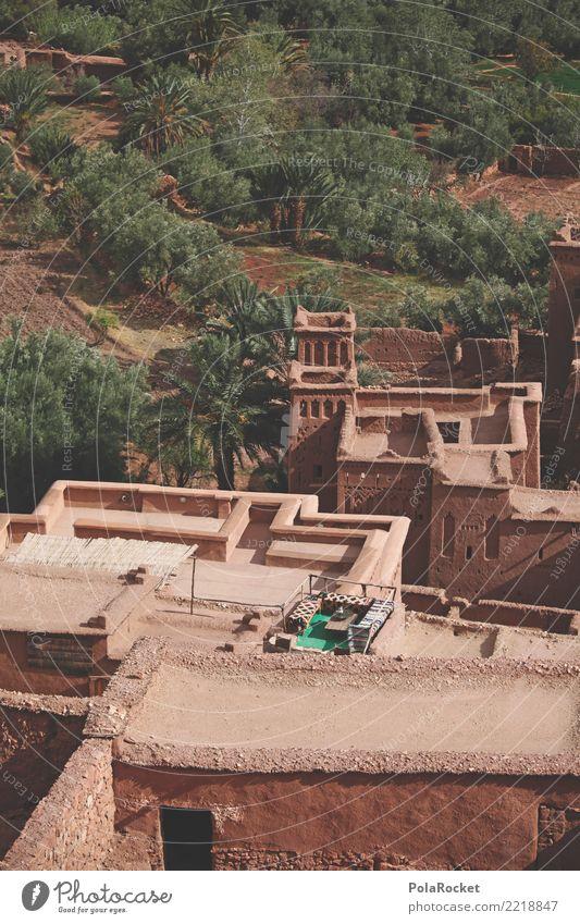 #A# Arabic Terrace Haus Mauer Wand Terrasse ästhetisch Arabien Naher und Mittlerer Osten Orientteppich Orientalische Küche Weltkulturerbe Marokko Farbfoto