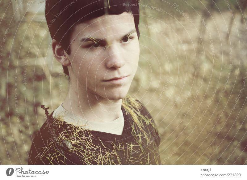 Metamorphose Mensch Jugendliche Gesicht Herbst Kopf braun Erwachsene maskulin T-Shirt einzigartig außergewöhnlich Identität herbstlich Tannennadel