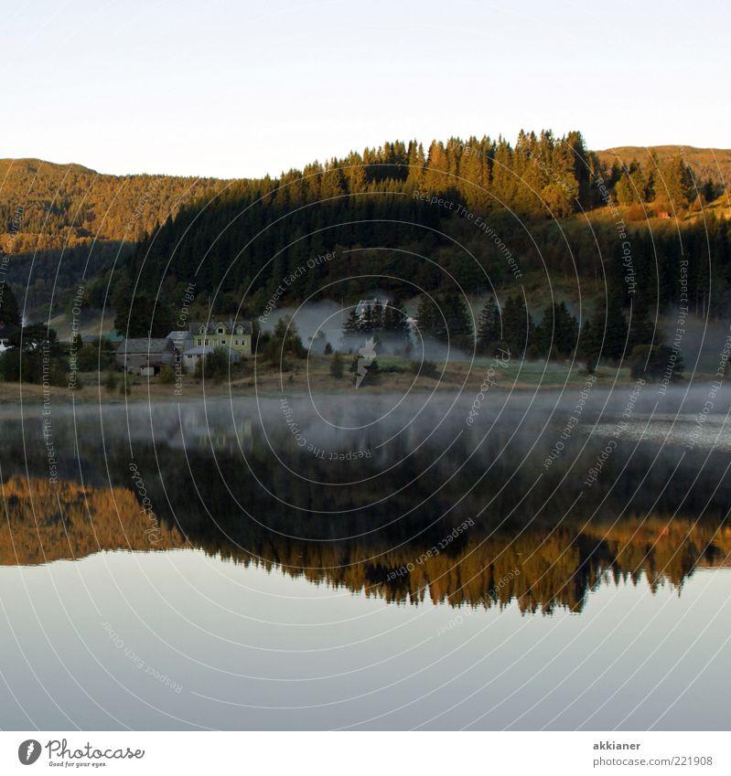 Spiegelung in der Morgenstunde Umwelt Natur Landschaft Pflanze Urelemente Wasser Himmel Wolkenloser Himmel Herbst Baum Wald Hügel Berge u. Gebirge Seeufer nass