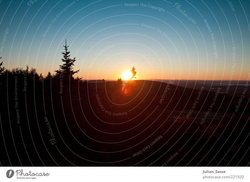 Blau-Orange Umwelt Natur Landschaft Pflanze Urelemente Erde Luft Himmel Wolkenloser Himmel Horizont Sonnenaufgang Sonnenuntergang Sonnenlicht Herbst Wetter