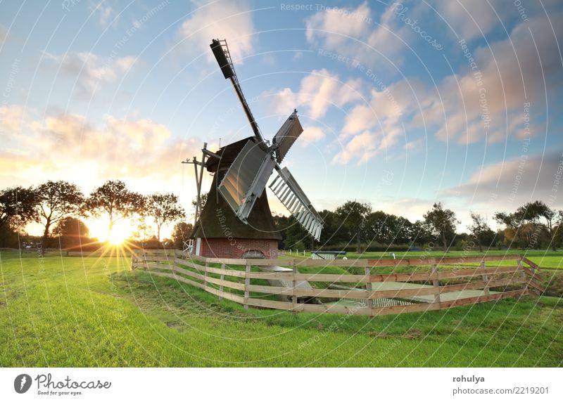 Sonnenaufgang hinter reizender niederländischer Windmühle auf Wiese Natur Landschaft Himmel Wolken Sonnenuntergang Sommer Schönes Wetter Gras Feld Gebäude