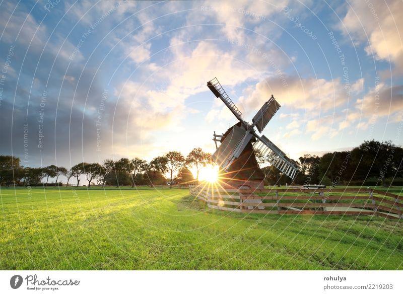 Sonnenaufgang hinter schöner holländischer Windmühle in Holland Ferien & Urlaub & Reisen Natur Landschaft Sonnenuntergang Sonnenlicht Sommer Schönes Wetter Gras