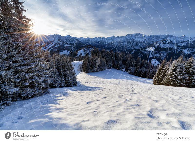 Morgensonnenschein in den schneebedeckten Alpen Ferien & Urlaub & Reisen Sonne Winter Schnee Berge u. Gebirge Natur Landschaft Eis Frost Wald Hügel weiß Stern
