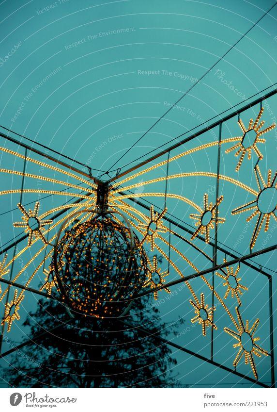 trier Weihnachten & Advent Himmel Baum Pflanze Winter Stimmung Feste & Feiern Stern Dekoration & Verzierung leuchten Vorfreude Abend Weihnachtsdekoration