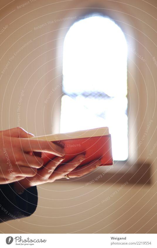 Gebet Zeichen lesen rot Gottesdienst Christentum Buch Kirche Kirchenfenster Wunsch Katholizismus Protestantismus Glaube Religion & Glaube Kloster heilig