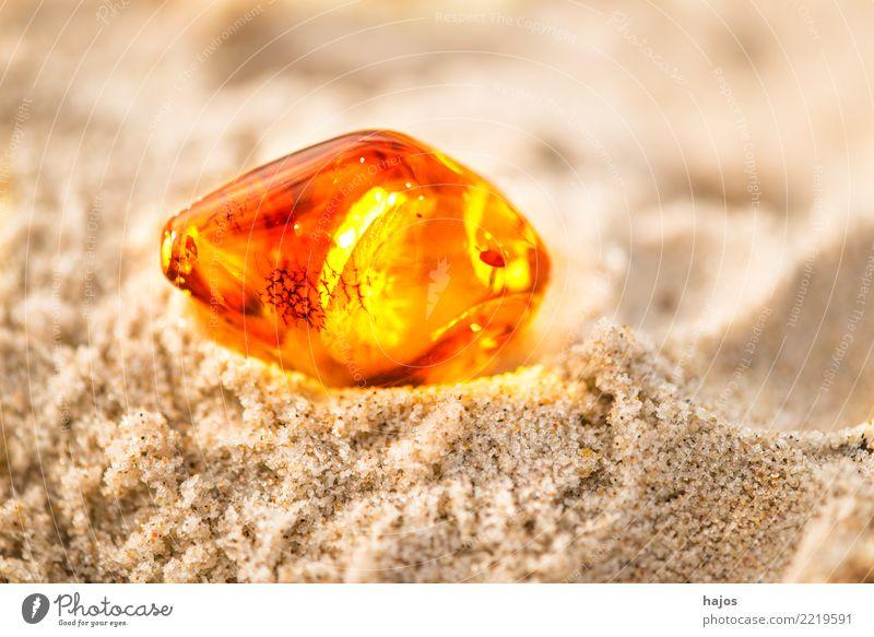 Bernstein am Ostseestrand Alternativmedizin Medikament Strand Urelemente Sonne Schmuck Stein leuchten gelb Ewigkeit baltisch Sandstrand Baumharz strahlend